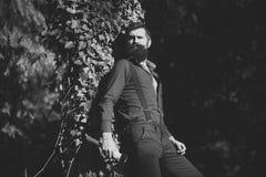 Un hombre serio 13 Maderero masculino en bosque Fotografía de archivo