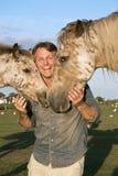 Un hombre sonriente feliz que acaricia sus caballos Imagen de archivo