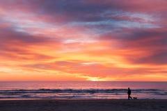Un hombre un perro que camina en la playa Foto de archivo libre de regalías