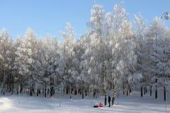 Un hombre y un niño caminan en el parque en invierno foto de archivo libre de regalías