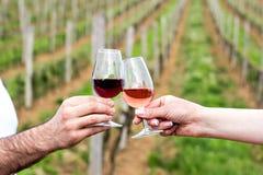 Un hombre y una mujer comprueban con los vidrios de vino Vidrios con el vino rojo en las manos femeninas y masculinas degustación Fotos de archivo libres de regalías