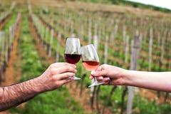 Un hombre y una mujer comprueban con los vidrios de vino Vidrios con el vino rojo en las manos femeninas y masculinas degustación Foto de archivo libre de regalías