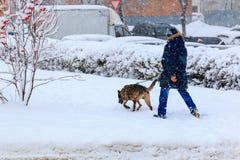 Un homme avec un chien de berger sur une laisse dans le paysage de ville d'hiver Images stock