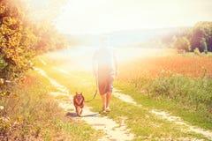 Un homme avec un chien marche le long du chemin de terre Image libre de droits