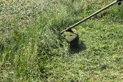 Un homme avec une tondeuse ? gazon manuelle fauche l'herbe photos stock