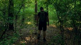 Un homme barbu avec un sac à dos marche par une forêt dense et émerge dans une clairière de forêt L'appareil-photo se déplace apr banque de vidéos