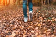 Un homme cesse la marche Le ` s d'amie du ` s de fille Filles chaudes sur la nature en parc parmi les feuilles du jaune Automne Image libre de droits