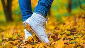 Un homme cesse la marche Le ` s d'amie du ` s de fille Filles chaudes sur la nature en parc parmi les feuilles du jaune Automne Photo stock