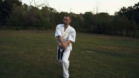 Un homme dans le karaté de pratique de kata de kimono blanc tôt le matin en parc de ville banque de vidéos