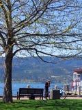 Un homme de bicyclette prenant un repos sous le grand arbre dans un jour ensoleillé Images libres de droits