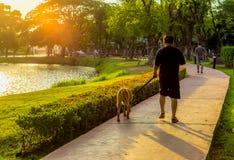 Un homme et son chien en parc images stock