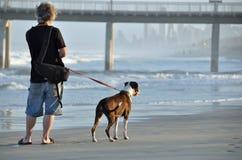 Un homme et son crabot marchant ensemble sur la plage sablonneuse Images libres de droits