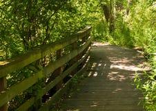 Un homme a fait le chemin en bois dans les bois pendant l'été Image stock