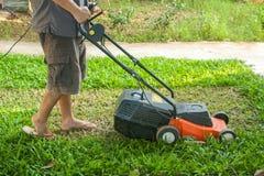 Un homme fauchent l'herbe à son arrière-cour Photographie stock