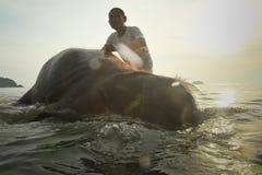 Un homme lave son éléphant sur l'île de Ko Chang Image stock
