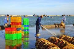 Un homme local nettoie ses paniers qui ont été employés pour transporter des poissons du bateau au camion Images stock
