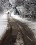 Un homme marchant par la neige de régfion boisée Photos stock
