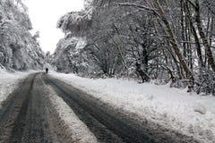 Un homme marchant par la neige de régfion boisée Photo libre de droits