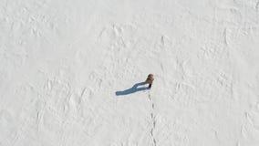 Un homme marche le long d'un champ de neige solitude Vue de ci-avant clips vidéos