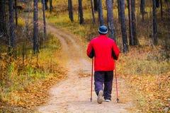 Un homme marche le long d'un chemin parmi des arbres dans une forêt en automne images libres de droits