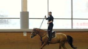 Un homme montant un cheval brun autour de l'arène L'homme accomplit des tours à cheval v0ûte Équitation de tour Position de monte clips vidéos