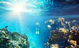 Un homme naviguant au schnorchel dans le beau récif coralien avec un bon nombre de poissons Image libre de droits