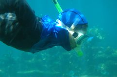 Un homme naviguant au schnorchel sous l'eau Photographie stock