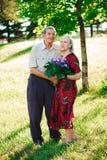 Un homme plus âgé de 80 années donne des fleurs à son épouse en parc d'été photo stock