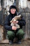 Un homme plus âgé est occupé à multiplier de nouvelles races des porcs Photos stock