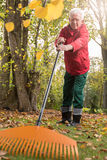 Un homme plus âgé tout en travaillant dans le jardin Photo libre de droits