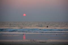 Un homme se tient en mer au coucher du soleil Images stock