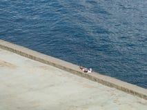 Un homme solitaire faisant une pause sur le Malecon, La Havane, Cuba photographie stock