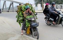 Un homme sur la motocyclette en Asie avec des babanas photos libres de droits