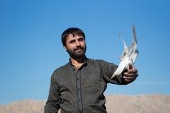 Un homme tenant une colombe avec fierté Image stock