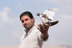 Un homme tenant une colombe avec fierté Photographie stock libre de droits