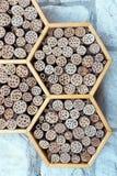 Un hotel salvaje de la abeja Imágenes de archivo libres de regalías