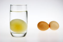 Un huevo crudo sin cáscara Imagenes de archivo