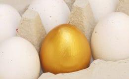 Un huevo de oro en un cartón del huevo Fotografía de archivo