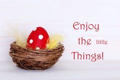 Un huevo de Pascua rojo en jerarquía con cita de la vida disfruta de pequeñas cosas imagen de archivo libre de regalías