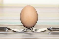 Un huevo del pollo encima de dos bifurcaciones metálicas fotos de archivo libres de regalías
