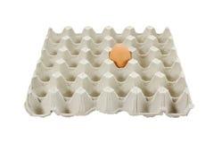 Un huevo en el conjunto plástico Imagen de archivo
