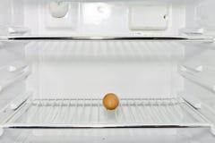 Un huevo en un refrigerador Imagen de archivo libre de regalías