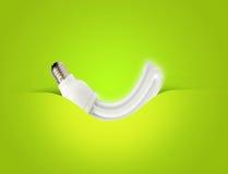 Un ideale economizzatore d'energia moderno della lampadina per ecologia Immagini Stock Libere da Diritti