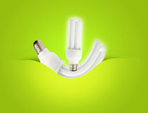 Un ideale economizzatore d'energia moderno della lampadina per ecologia Immagine Stock Libera da Diritti