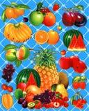 Un'illustrazione dei frutti come un fondo o carta da parati Fotografia Stock