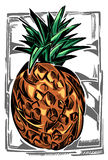 Un'illustrazione di colore di un ananas Immagini Stock Libere da Diritti