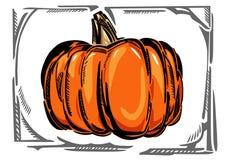 Un'illustrazione di colore stilizzata di una zucca Fotografia Stock