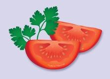 Il pomodoro ed il prezzemolo guarniscono Fotografia Stock Libera da Diritti