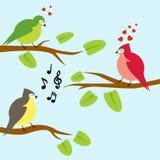 Un'illustrazione di vettore di tre uccelli sui rami Immagine Stock Libera da Diritti
