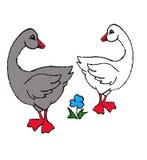 Un'illustrazione felice di due oche Fotografia Stock Libera da Diritti